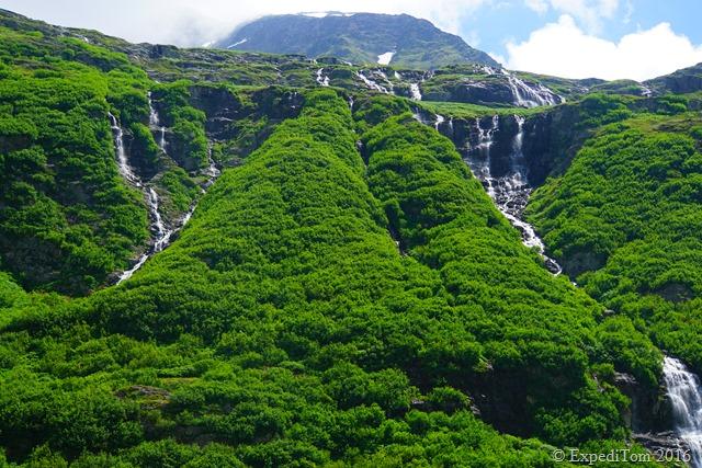 Lush green vegetation with hundreds of cascades