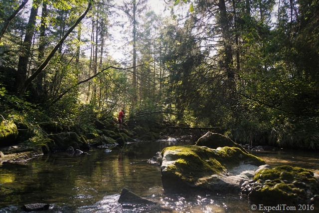 Fly Fishing the Canton of Schwyz13