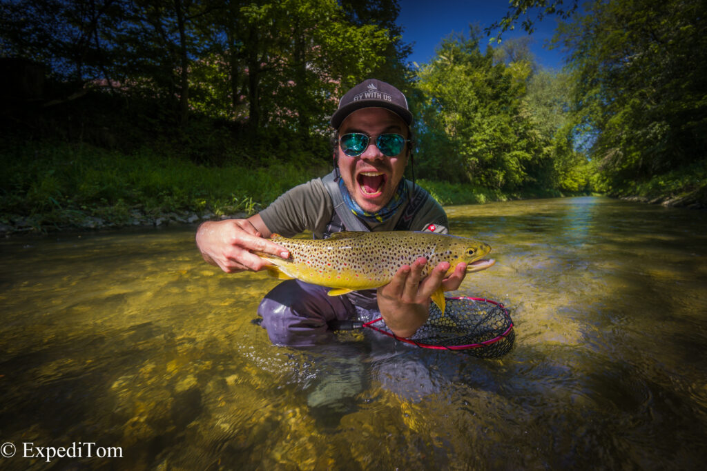 The large trout caught while canal fly fishing in Switzerland