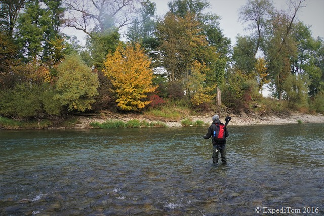 Fly Fishing for Grayling in Switzerland10