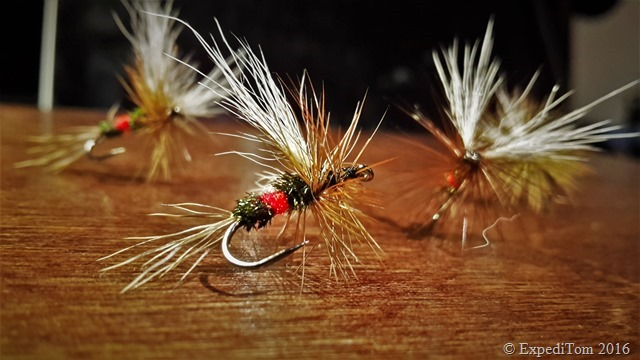 Royal Wulff fly I had the best results with in the trout season 2016