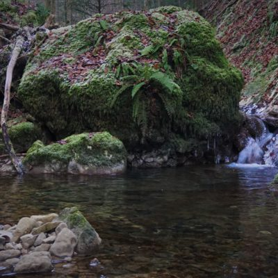 Huge stone blocking the small creek in the Jura mountain