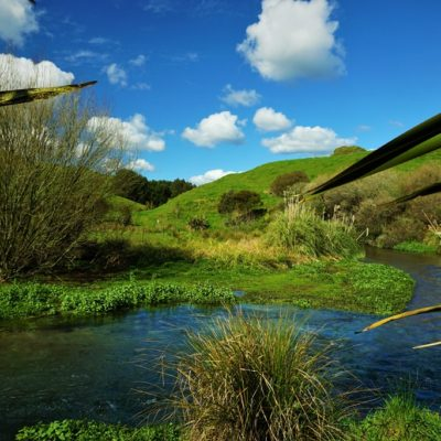 Secret fishing spots in New Zealand