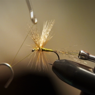 Tying an Olive Dun with Mallard Wings