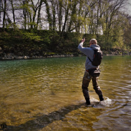 Fly Fishing the Aare in Switzerland for Barbel