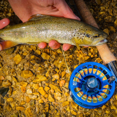 Guidestream Drift Fly Reel