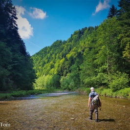 Fly Fishing Exploration in Bern: The Unsolved Riddle