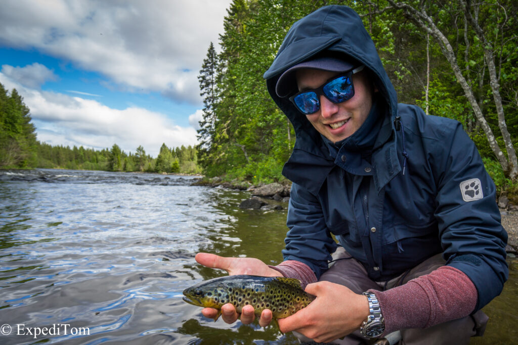 Another gorgeous brown trout from the Långan river, Jämtland Sweden