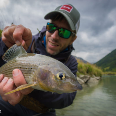 André with a decent grayling from the Krimmler Ache